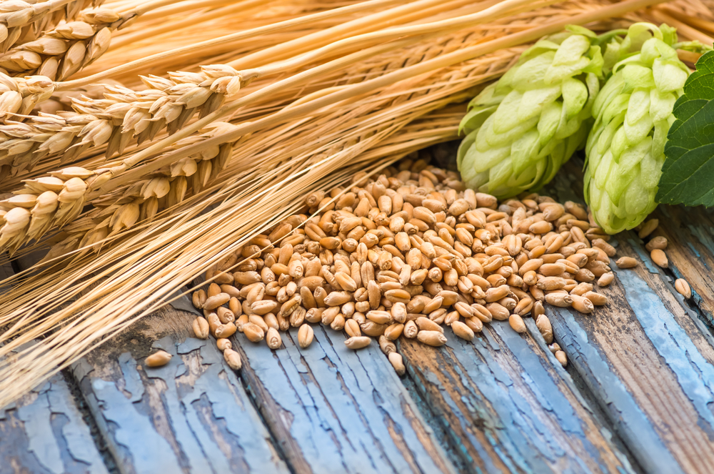 About Barley